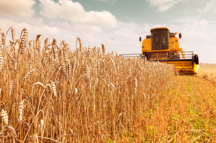 R&D_credits_important_for_the_agriculture_industry