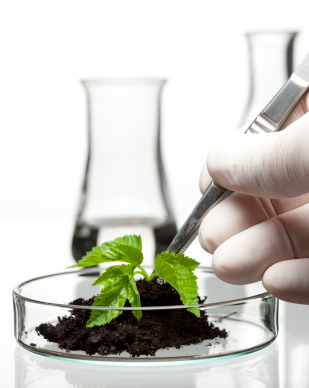Innovation in agriculture starts in the lab with new technologies and biosciences.