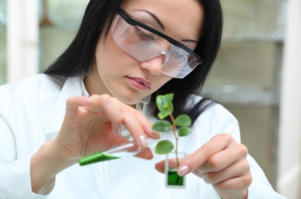 work completed in the lab should qualify for R&D tax credits in the agriculture industry.