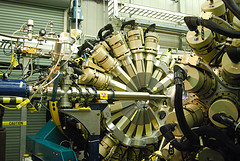Companies_manufacturing_or_producing_in_the_us_can_benefit_from_the_DPAD.