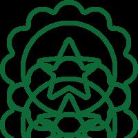 Icon-Dk_Star-Badge